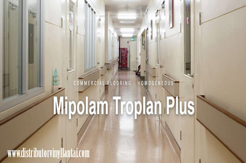 Vinyl Rumah Sakit Mipolam Troplan Plus