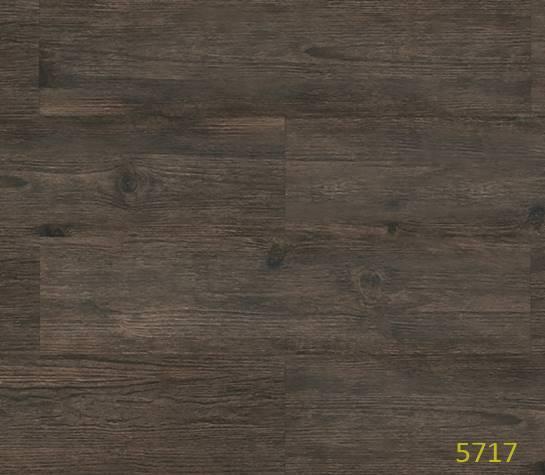 Lg Decotile 5717-Black Forest
